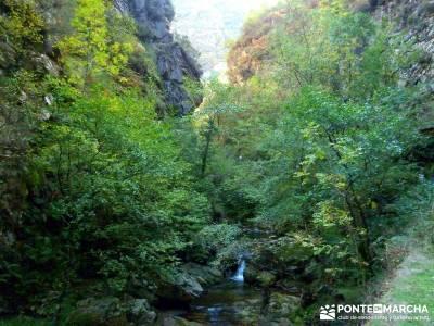 Hayedos Parque Natural de Redes;clubes de senderismo madrid excursiones madrid sierra excursiones en
